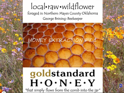 How We Extract Gold Standard Honey